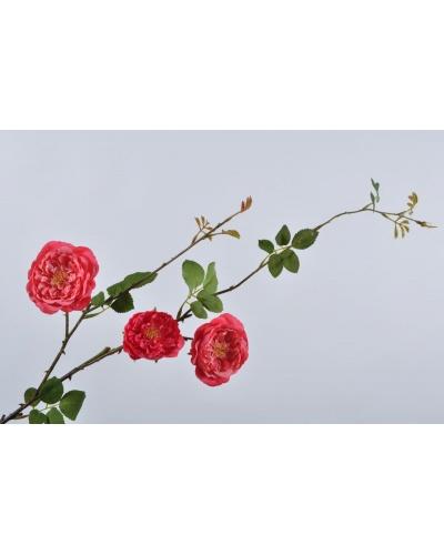 Роза 95 см
